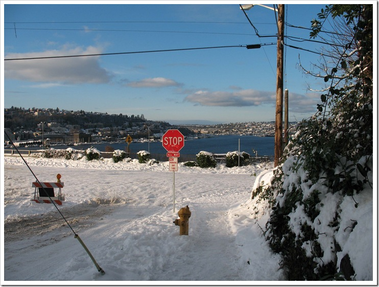 Seattle Schneetag 22 Dezember 2008 Lakeview Blvd