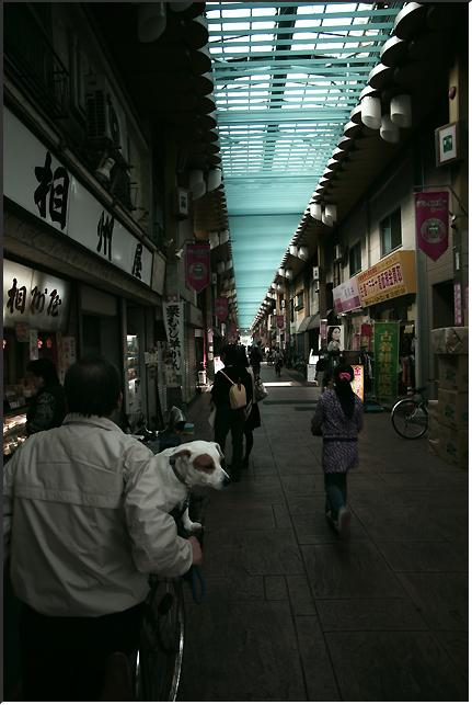 minowabashi_101106_02.jpg