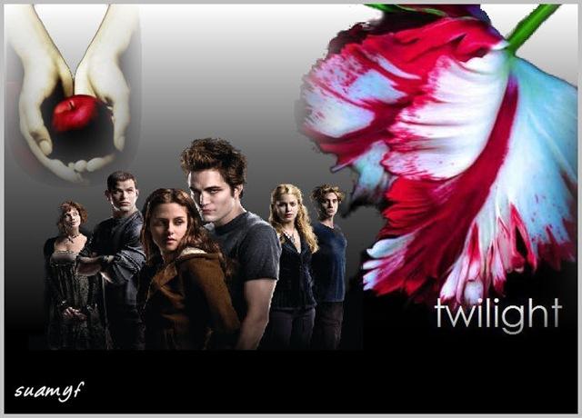 twilightgruppo