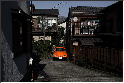 zoshigaya_090214_06.jpg