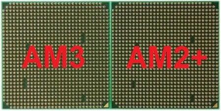 am3 vs am2+