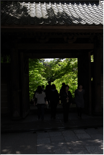 kamakura_100501_09.jpg