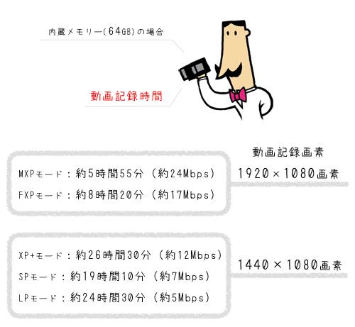iVIS(アイビス) HF21メモリ