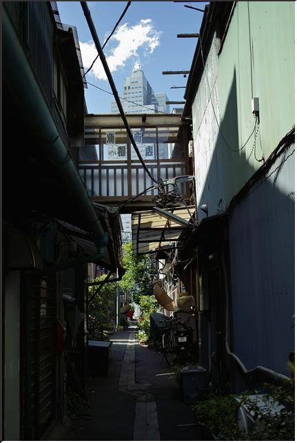 tsukuda_090426_02.jpg
