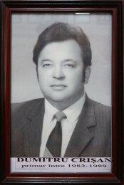 Dumitru Crisan - 1982-1989