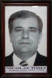 Nicolae Toma - 1991-1996