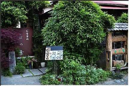 sasanoha_090501_02.jpg