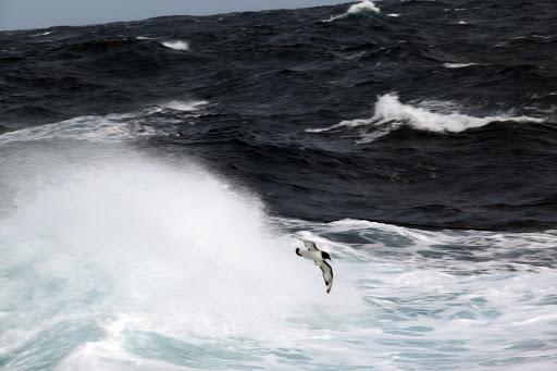 南極 風景