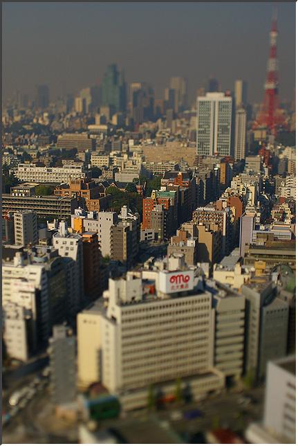 tokyotower_061110_01.jpg