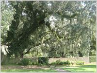 Spanish moss - Brookgreen Gardens, Myrtle Beach, South Carolina