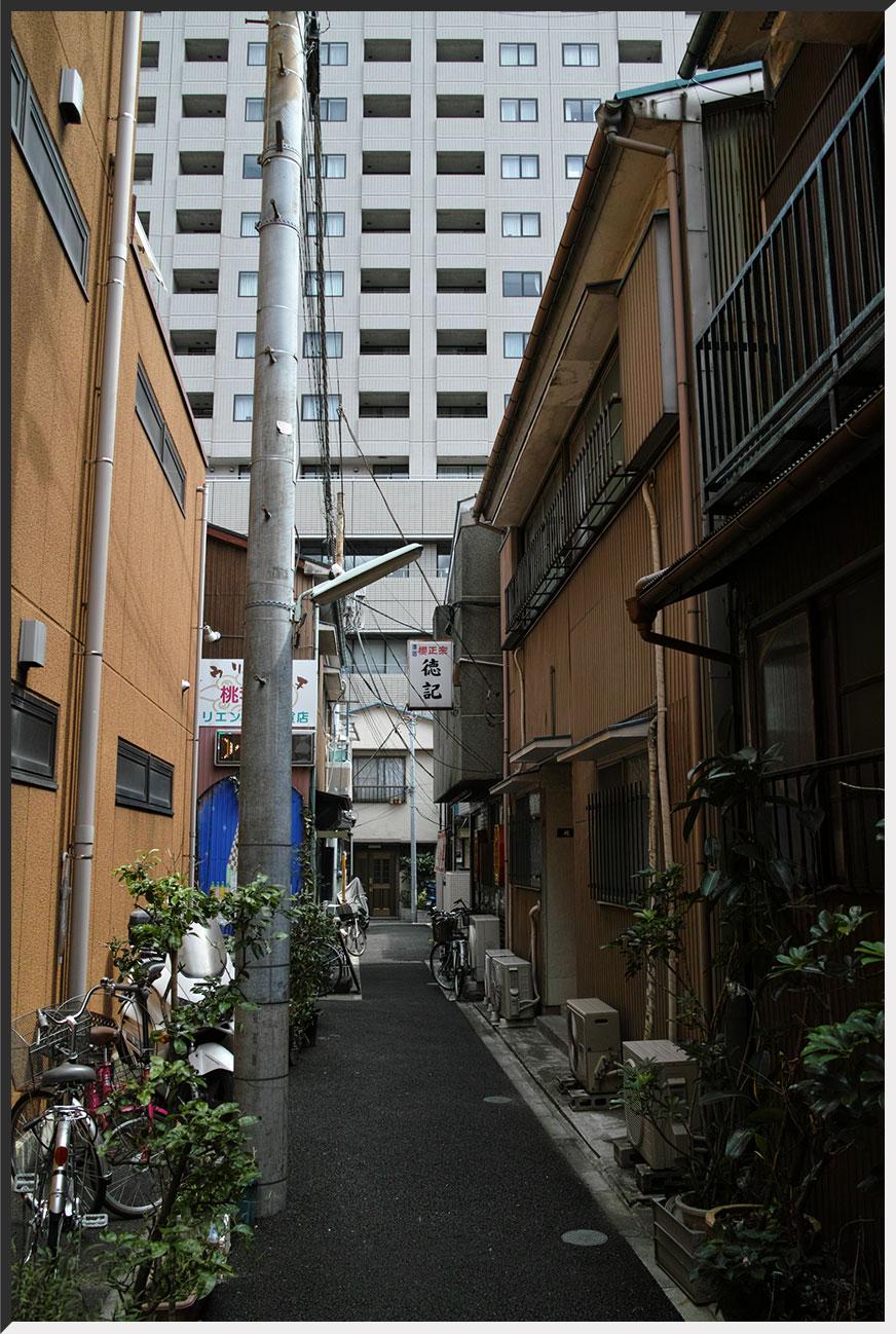 tokki_130721_05.jpg