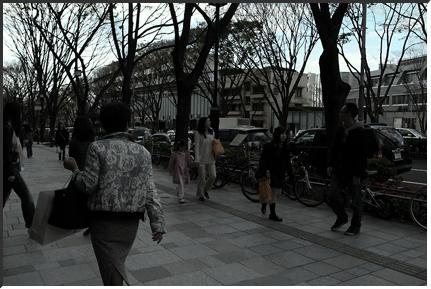 harajuku_100424.jpg
