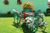 Melinda Pánzio - chariot in the courtyard