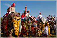 Elephant Festival, Jaipur, Rajasthan