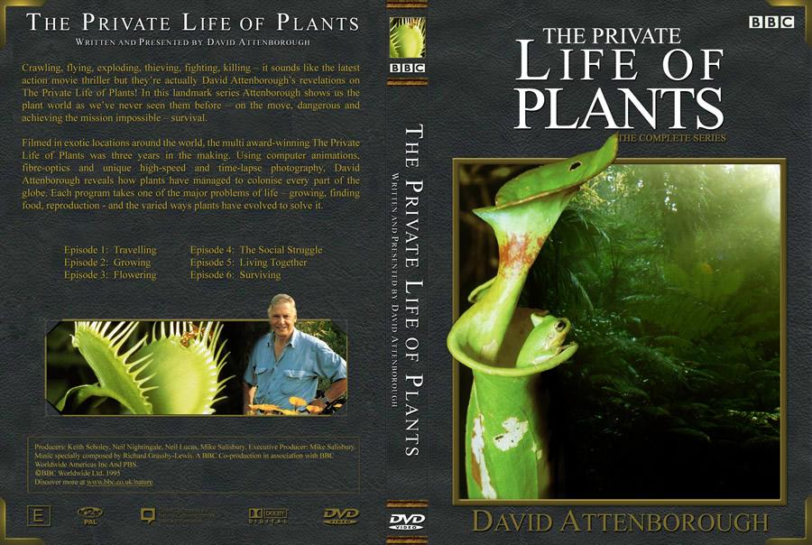 BBC 植物私生活