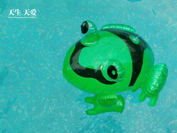 画卡通游泳青蛙
