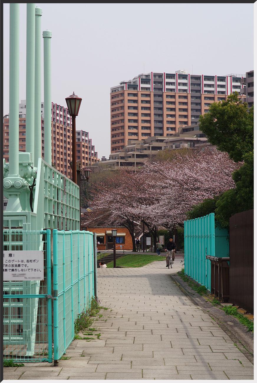 shimura_130320_01.jpg