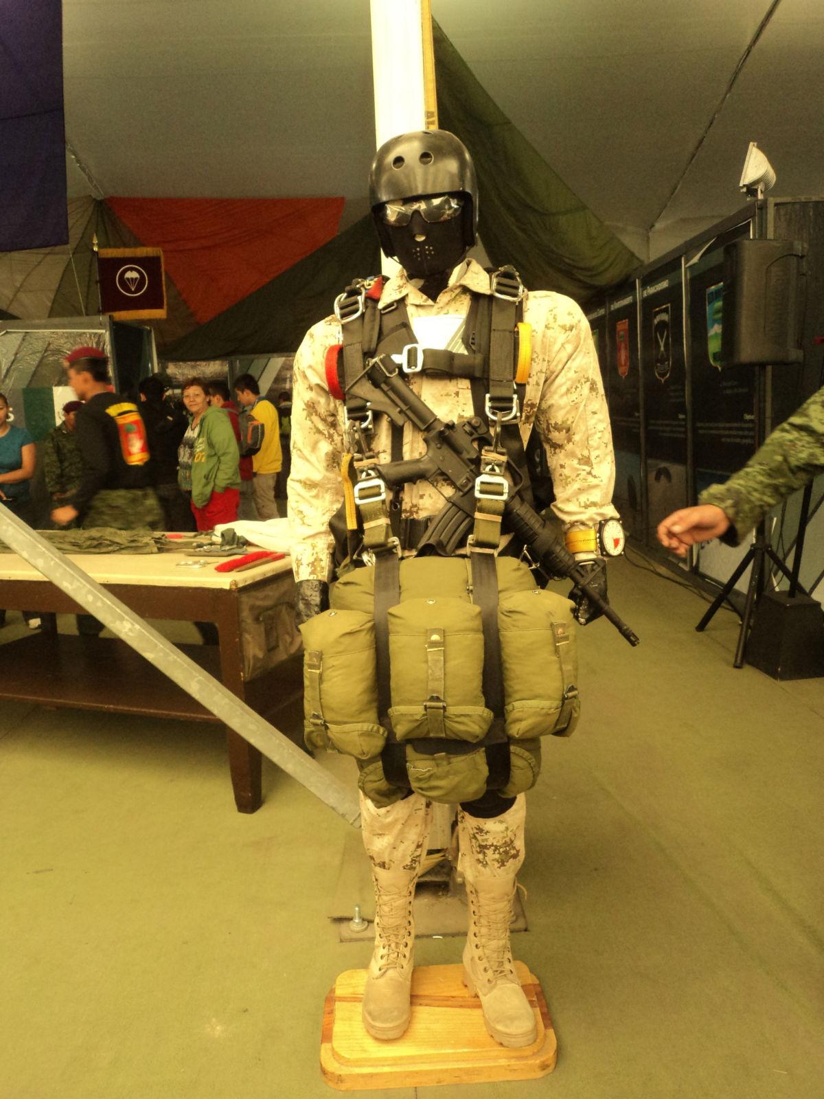 Exhibicion itinerante del Ejercito y Fuerza Aerea; La Gran Fuerza de México PROXIMA SEDE: JALISCO - Página 2 DSC01322
