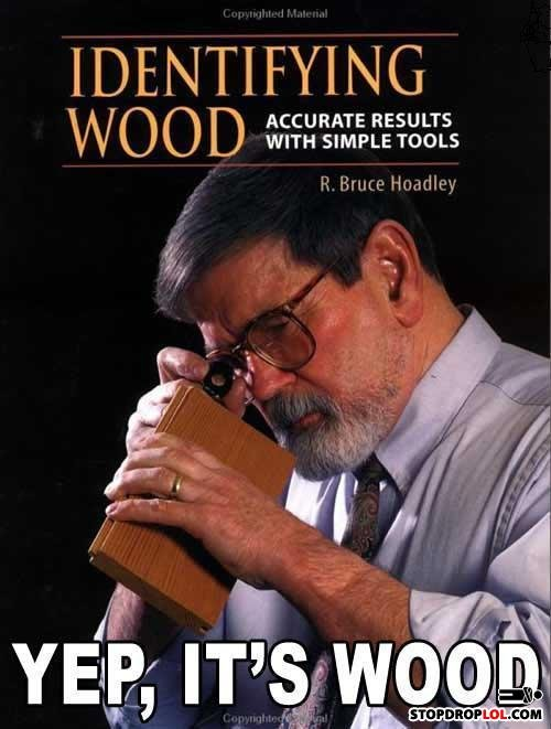 Is it wood?