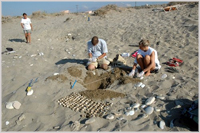 Checking turtle nests in Greece