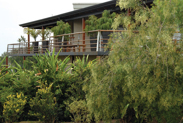 Jardin, diseño, arquitectura, paisajismo