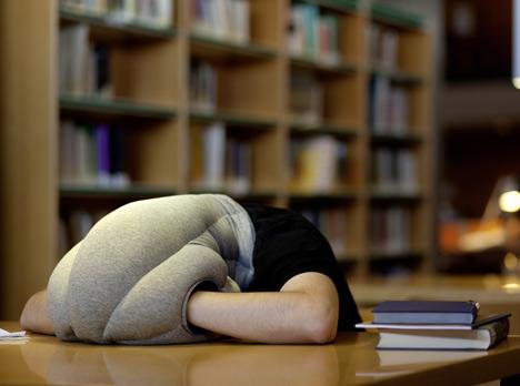 Ostrich Pillow - Kawamura/Ganjavian