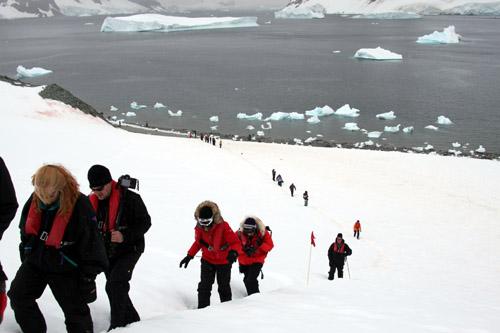 南極半島 ダンゴ島