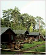 Woodland Lodges, New Forest, Hampshire