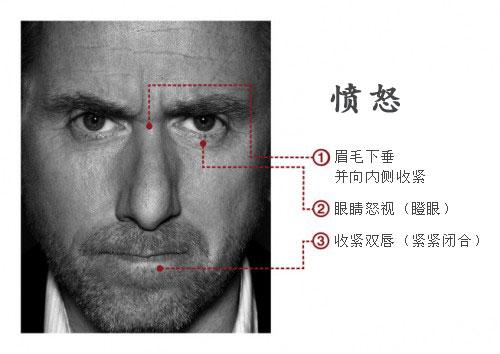 [影集] Lie to Me (2009~2011) Lie%20To%20Me%20-%20anger