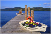 Flower filled boats on pier at Duck's Bay, Loch Lomond, Scotland