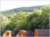 Wooden pods