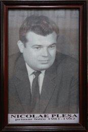 Nicolae Plesa - 1981-1982