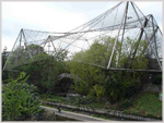 London Zoo - Snowdon Aviary