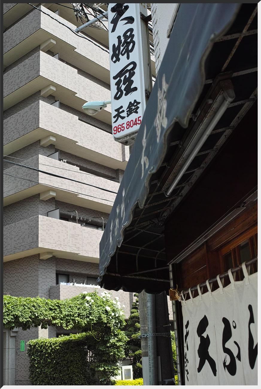 tensuzu_130525_02.jpg