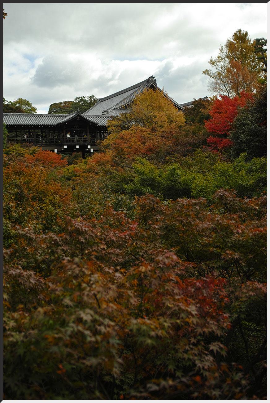 kyoto_121110_02.jpg