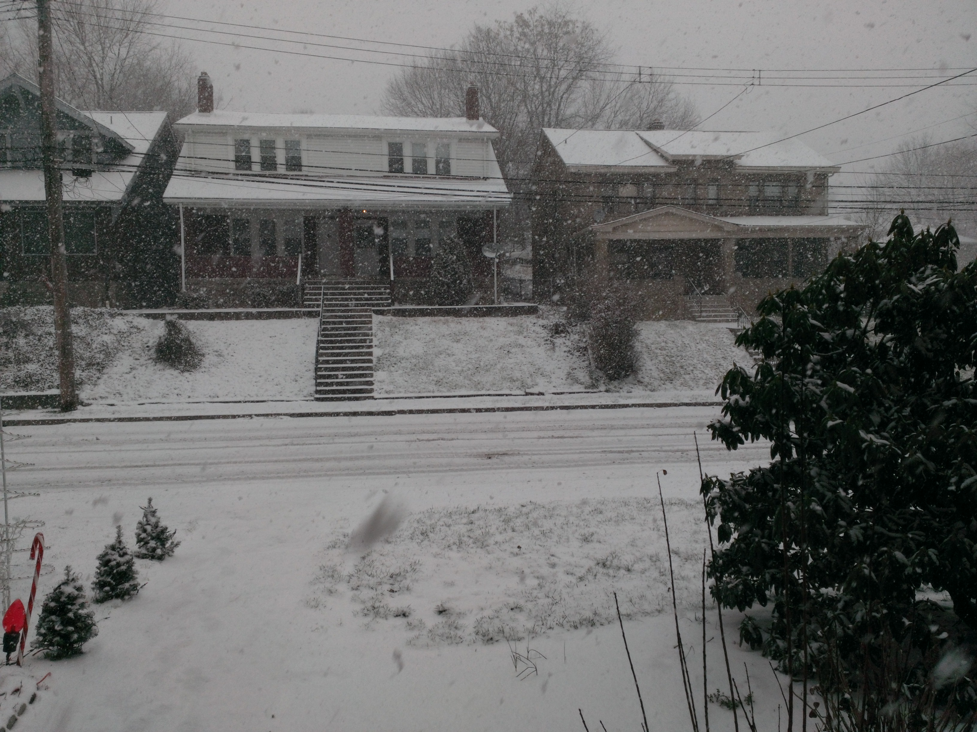 A cell phone photo from snow yesterday (12/26) - Note the neighbor's Christmas decorations.