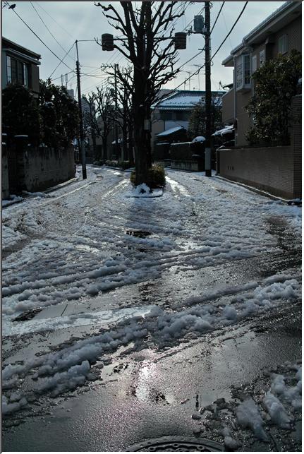 snow_110215_01.jpg