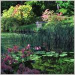 Swinton Park, Ripon, North Yorkshire, England