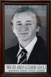 Adrian Alexandru Dancila - 2003-2008