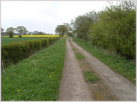 The Old Street, Roman Road between Tadcaster and York