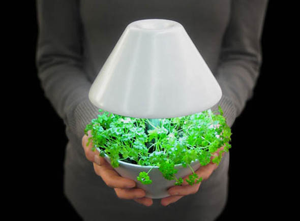 Iluminacion Baño Bauhaus:LED Plant Grow Lights