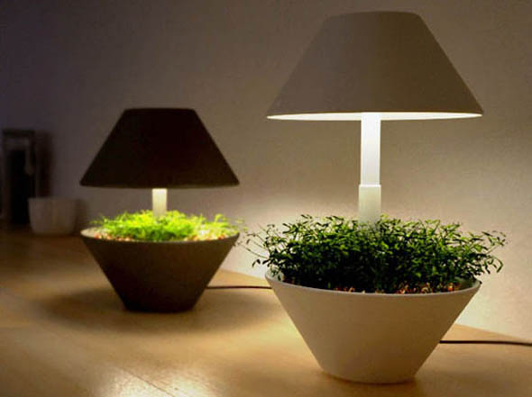 Iluminacion Baño Bauhaus:Growing Plants Indoors Grow Lights