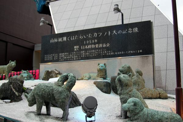 南極観測で活躍した樺太犬