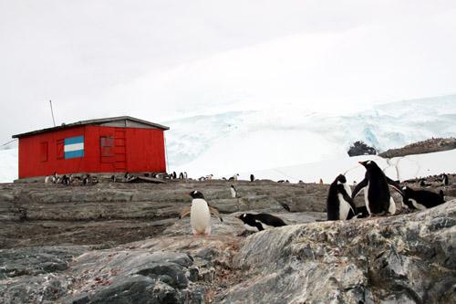 南極半島 ミケルセンハーバー