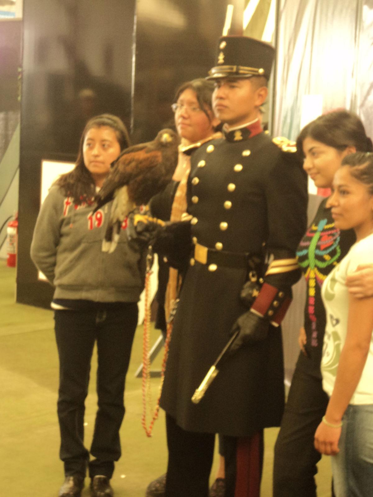 Exhibicion itinerante del Ejercito y Fuerza Aerea; La Gran Fuerza de México PROXIMA SEDE: JALISCO - Página 3 DSC01406