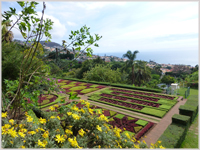 Botanical Gardens, Funchal, Madeira