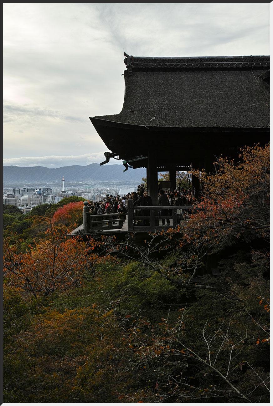kyoto_121110_03.jpg