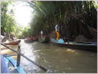Going local on the Mekong Delta
